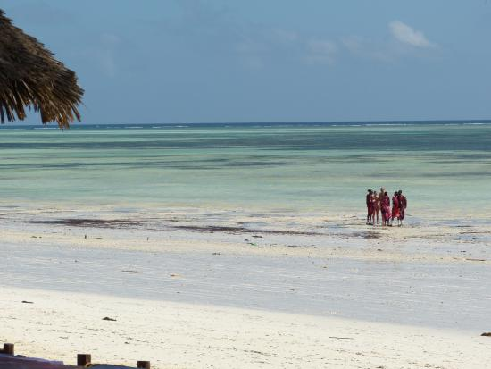 Dream of Zanzibar: plaża