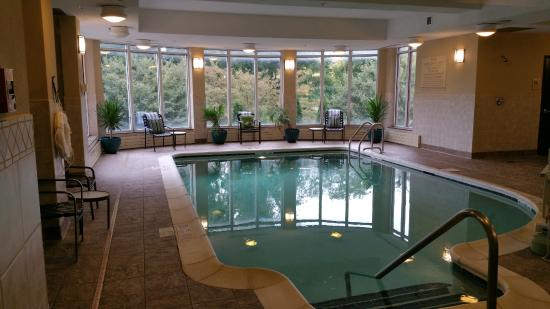 Hilton Garden Inn Albany / SUNY Area: Indoor Pool At Hilton Garden Inn  Albany/ Photo