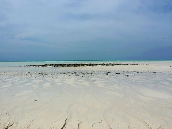 Quirimbas Archipelago, Mozambique : 20160101_160452_large.jpg