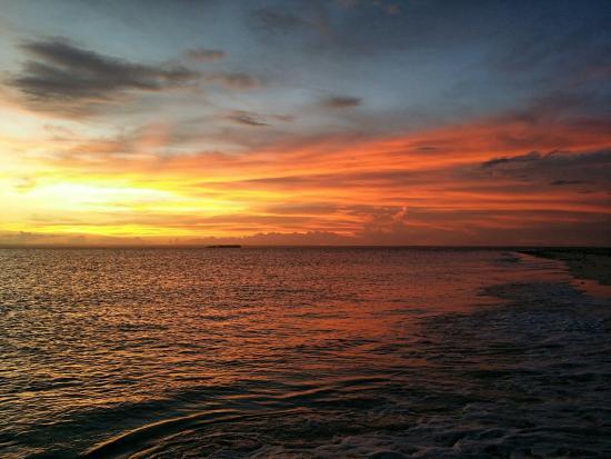 Quirimbas Archipelago, Mozambique : 20151231_180957_large.jpg