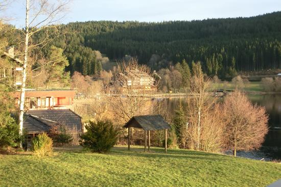 Seehotel Wiesler: photo2.jpg