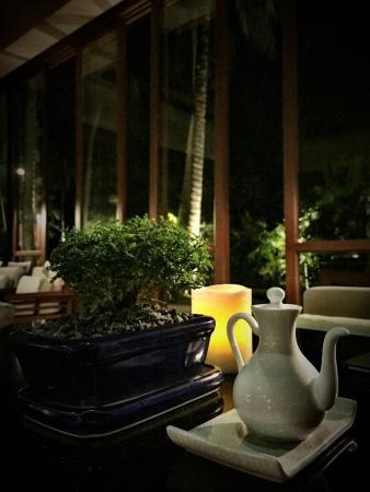 Tamarind: Bonsai