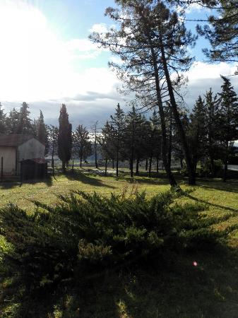Castel San Gimignano, Italia: IMG_20160103_095820_large.jpg