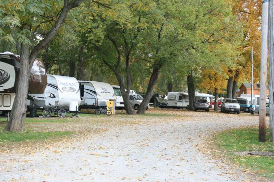 Mill Bridge Village & Campresort : Just one view of the camping area