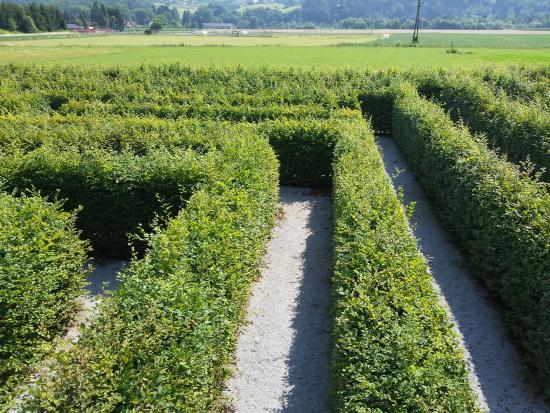 Rosegg, Αυστρία: Labirinto