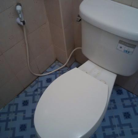 Kata Mountain Inn: dirty toilet