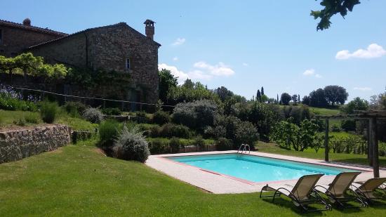 Monticiano, Italien: Great pool area