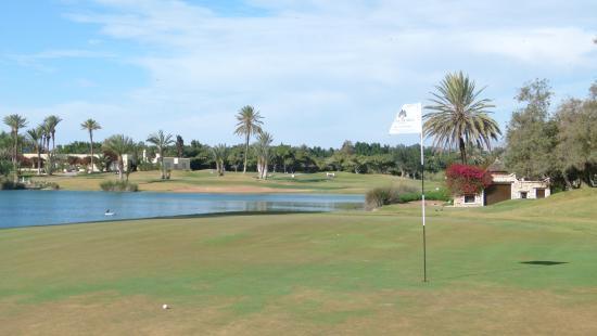 Golf du Soleil : Sur le green du trou 8