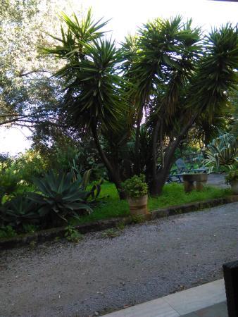 Hotel Villa Soles Photo