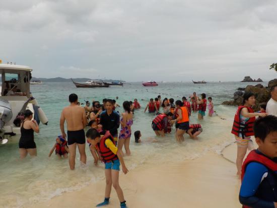 Phuket Free Day