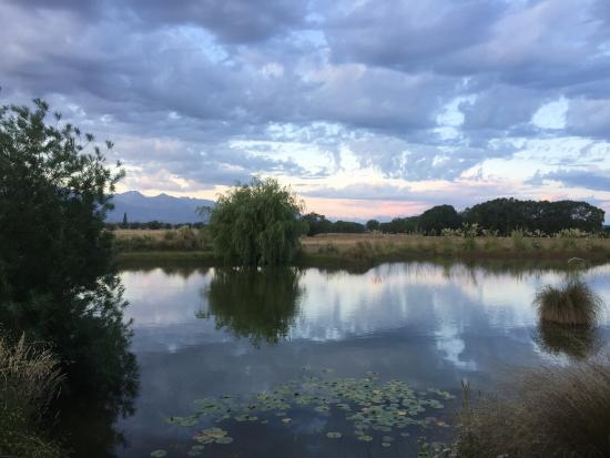 Twizel, Новая Зеландия: The view from our lodgings