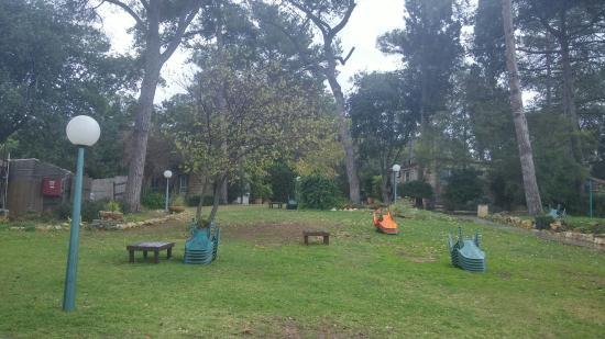 Beit Oren Hotel: Outdoor