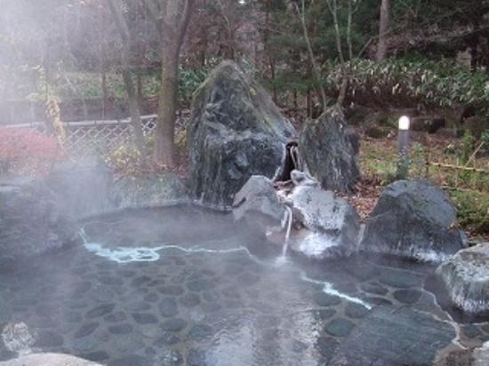 Photo of Higashiyama Park Hotel Shinfugetsu Aizuwakamatsu