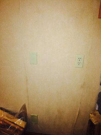 Hidden Ridge Resort : Wall in the main living room!