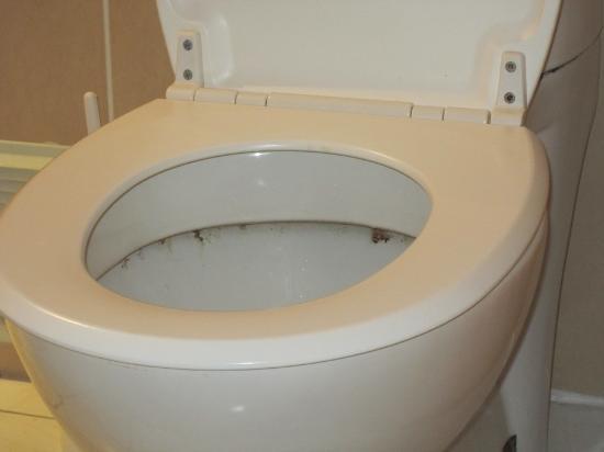 Montivilliers, França: WC sale