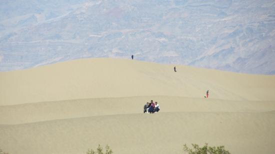 Mesquite Flat Sand Dunes Photo