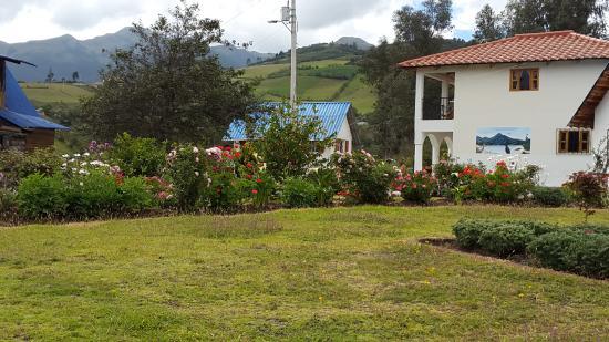 Hosteria Rose Cottage: Jardines