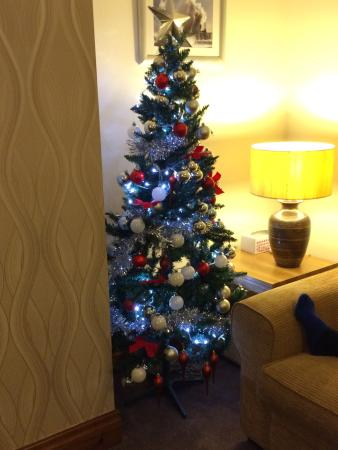 Royal Court Apartments: Christmas tree in the apartment!