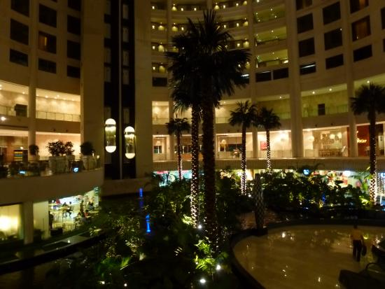 Hotel Airport City Delhi Reviews