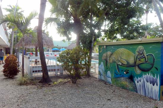 Floridian Hotel : the outside pool and part of manatee mural