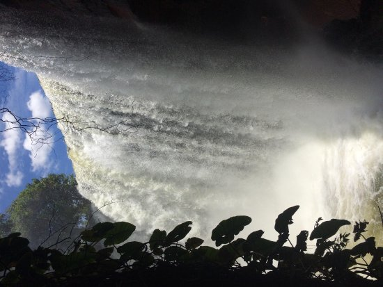 Cachoeira Da Fumaca صورة فوتوغرافية