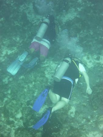 El Pulpo Divers: diving with Alberto