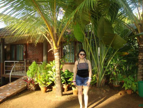 Cherai Beach Resorts Inside The Resort Garden