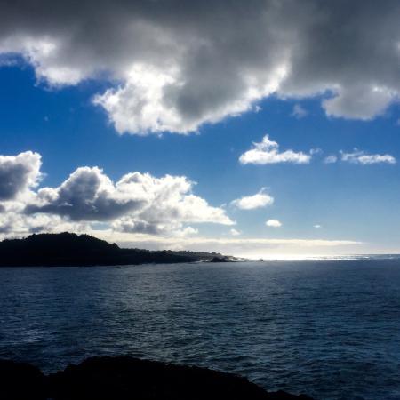 Mendocino Headlands State Park: photo3.jpg