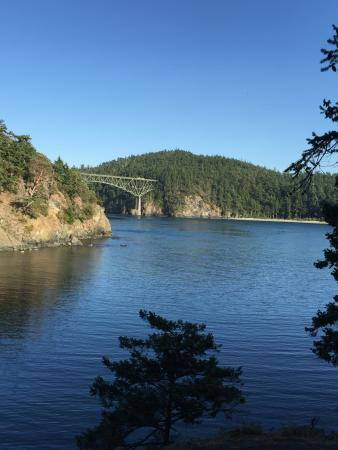 Oak Harbor, WA: Bridge from our hiking path