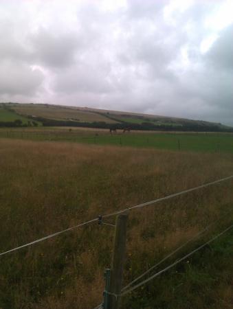 Osmington Mills, UK: Fields around the campsite