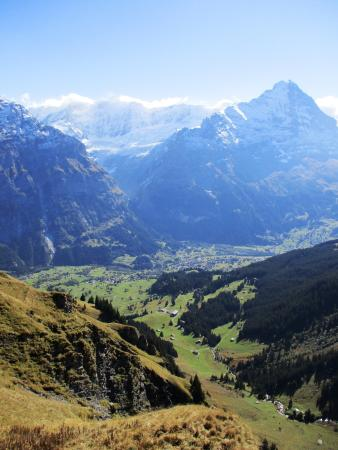 Grindelwald from First