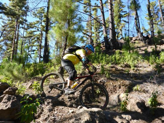 No Limits Tenerife: Biking in the south of Tenerife