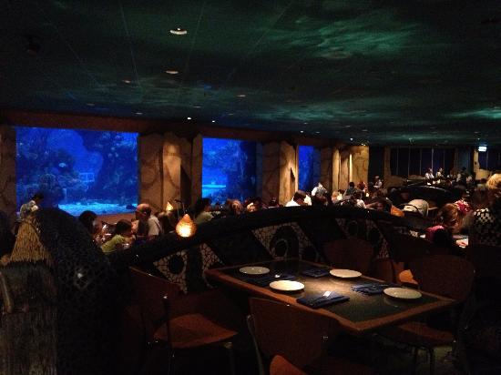 Great place fish in tank are beautiful food great for Fish restaurant orlando