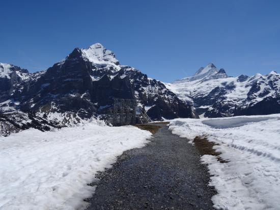 Grindelwald, Suiza: First Flyer strap-in tower