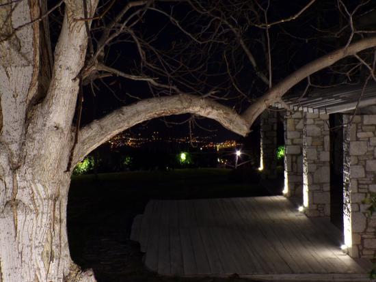 Mikros Vorias small luxury suites : κήπος