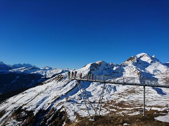 Grindelwald, İsviçre: DSC_0859_large.jpg