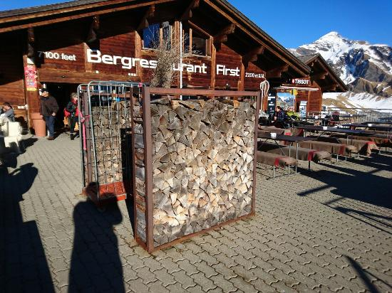 Grindelwald, İsviçre: DSC_0866_large.jpg