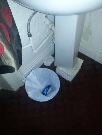 Queen's Hotel: Rat traps