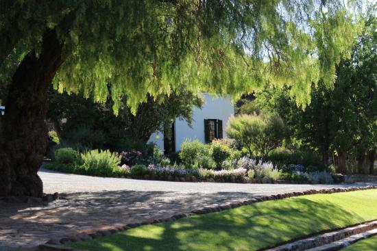 Abbotsbury: View from the garden