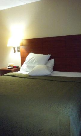 Selma, NC: Quality Inn