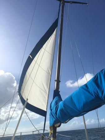 Vieques Sailing Tours