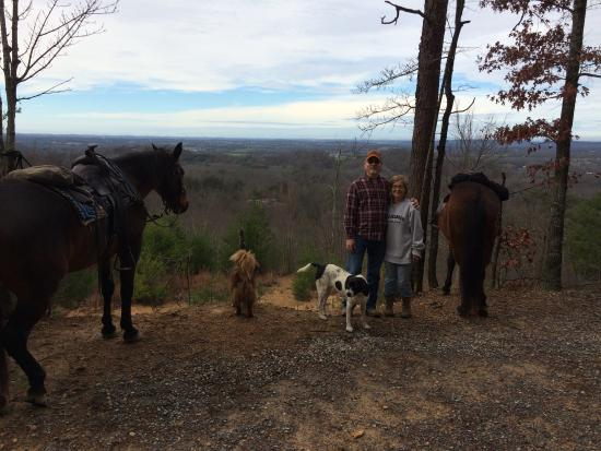 Walland, TN: Horseback riding