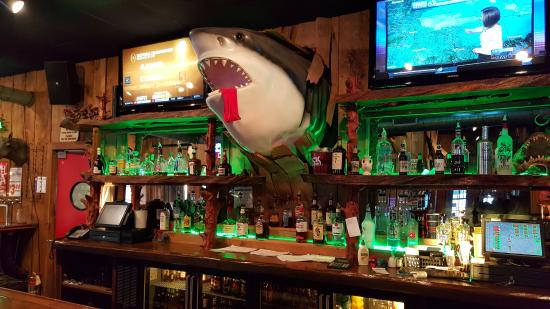 Sharks Roadhouse: shark over the bar