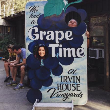 Wadmalaw Island, Carolina Selatan: at irvin vineyard