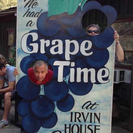 Wadmalaw Island, Carolina Selatan: at irvin vinyard