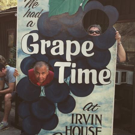 Wadmalaw Island, Carolina del Sur: irvin vineyard