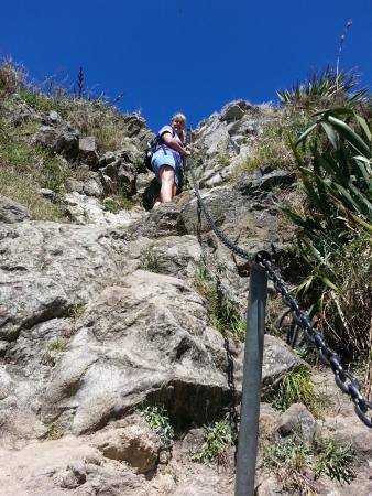 New Plymouth, Nieuw-Zeeland: Looking up