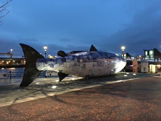 Big fish picture of big fish belfast tripadvisor for Big fish company