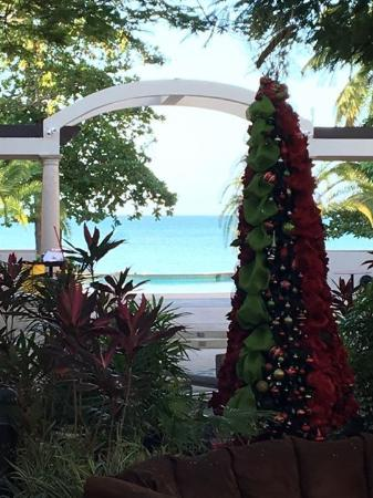 Rincon Beach Resort: View from hotel lobby