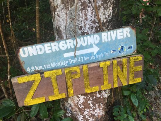 Sabang X Zipline: photo1.jpg